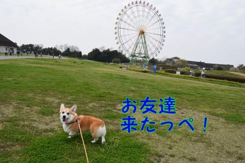 20150427_1.jpg