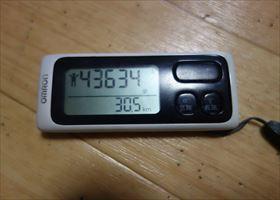 DSC05081-2015.jpg