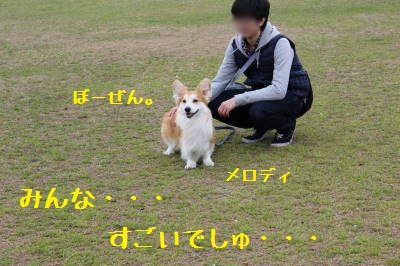 20150417135722faa.jpg