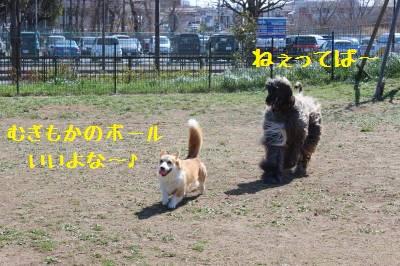 20150521174924ee4.jpg