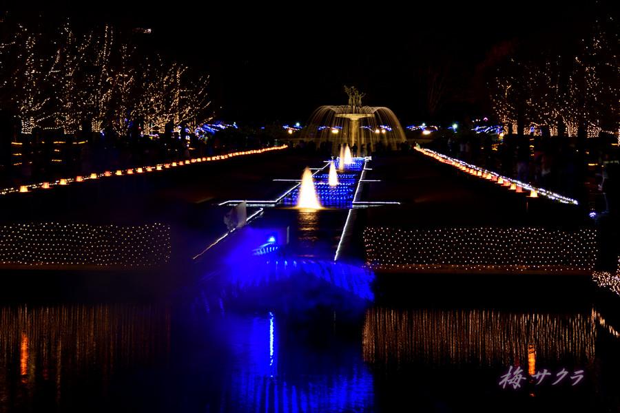 昭和記念公園のイルミ1(6)変更済