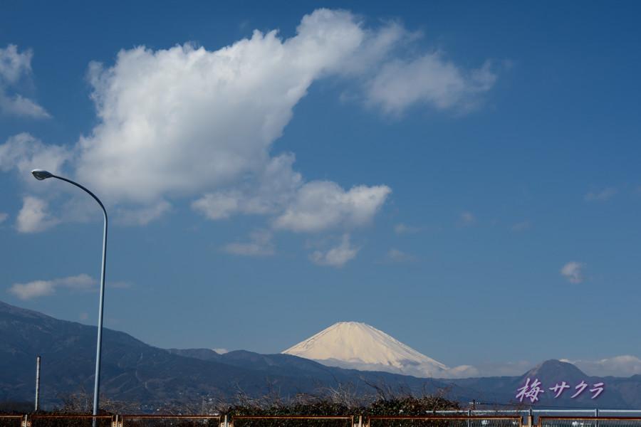 小田原・富士山1変更済