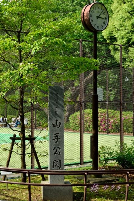 テニス発祥の地5-2変更済