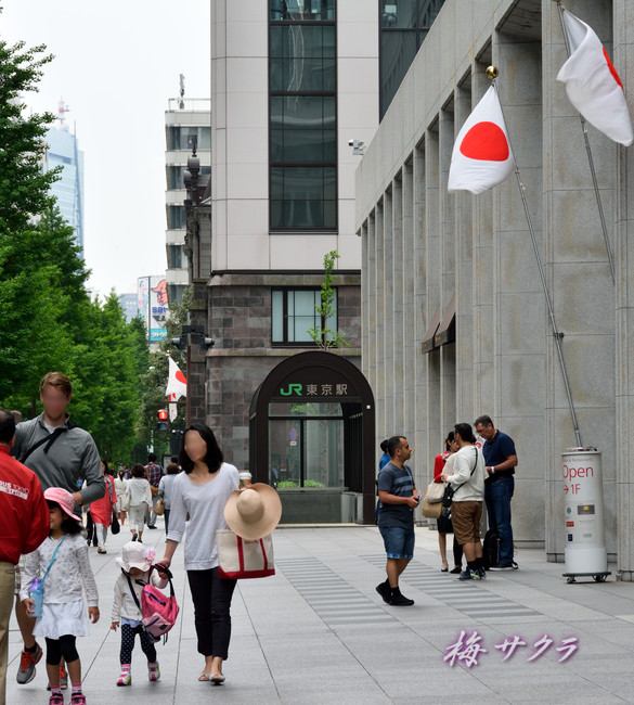 東京駅15変更済