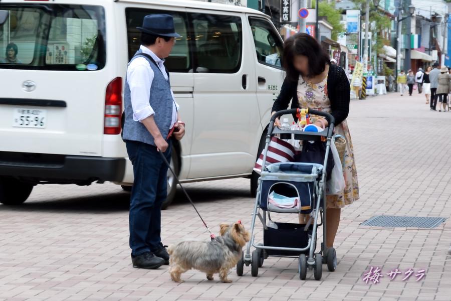 軽井沢2(8)変更済