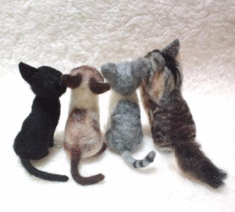 m-cats1.jpg