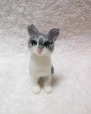 m-cats4.jpg