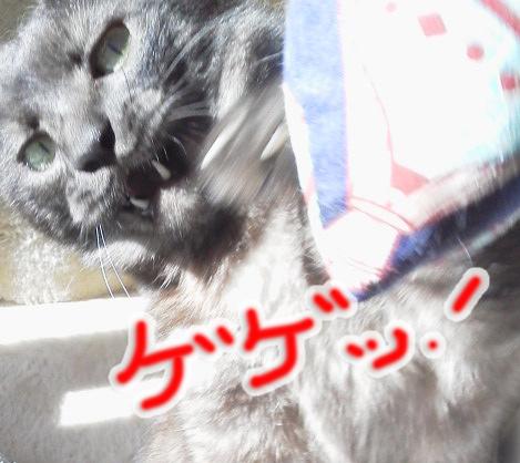 20150201114759acd.jpg