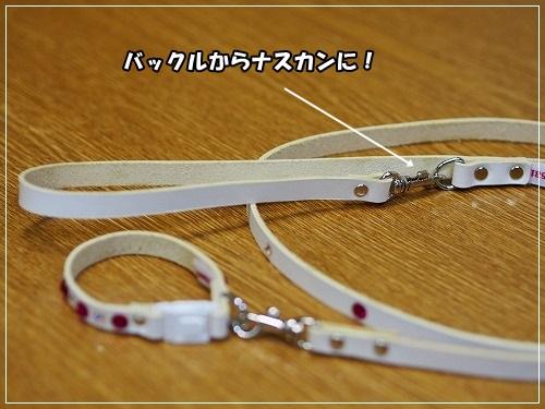 s-P3025697.jpg