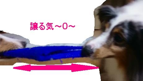 MOV_0149(3).jpg