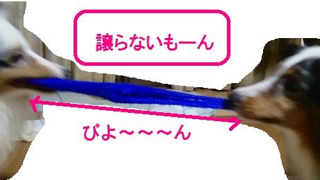 MOV_0149(6).jpg