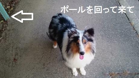 MOV_0904(31).jpg