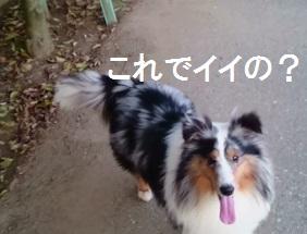 MOV_0904(32).jpg