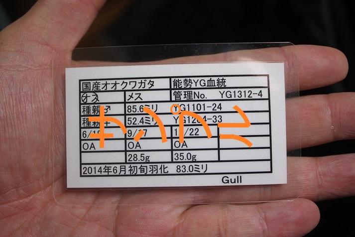 20141227115243088.jpg