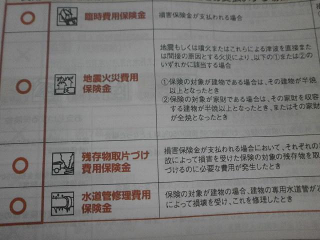 PC241025.jpg