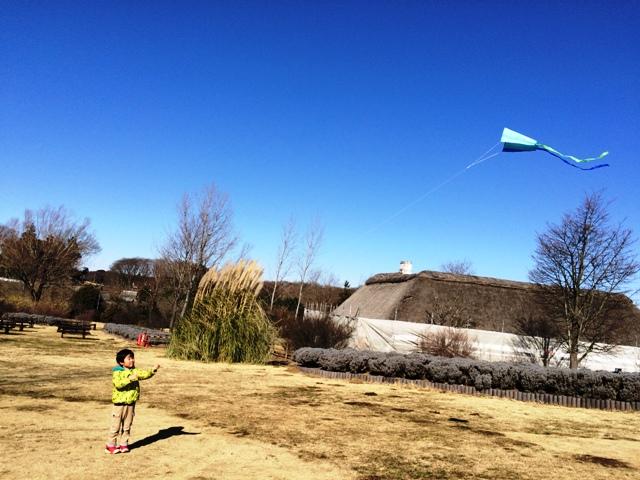 上手にアースカイトで凧揚げをする陸ちゃん