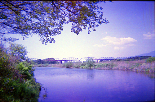 379-19A-2.jpg