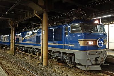 E1181651dsc.jpg
