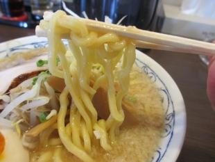 麺五郎竹尾 味噌ラーメン 麺
