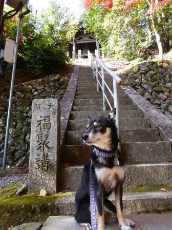 神峯山寺30