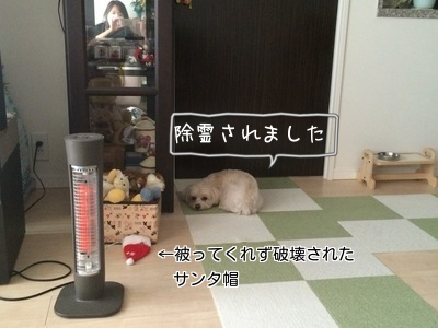 20141225220318ff4.png