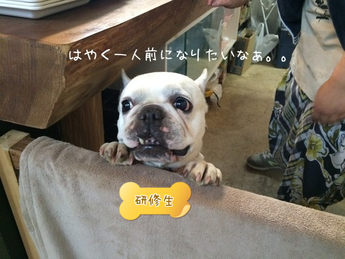 201505130102433bf.png