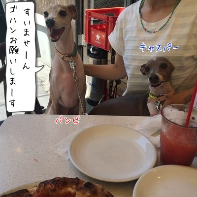 201505311955336cb.png