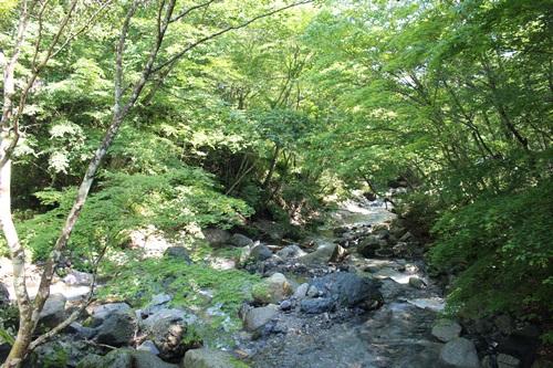 山伏キャンプ場7