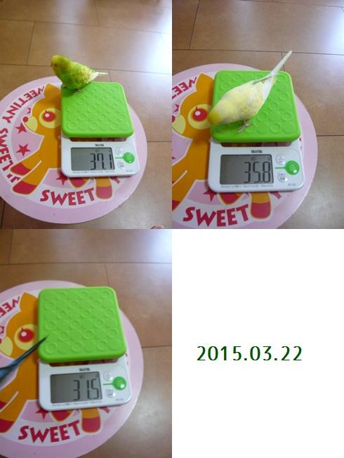 taizyu_20150322.jpg