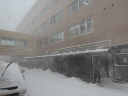 blizzard20150120_4.jpg