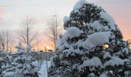 blizzardnextday_2.jpg