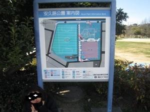 138-1.jpg