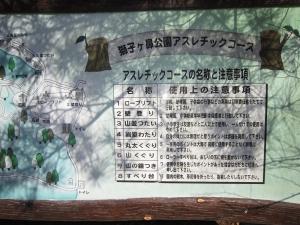 sisigahana2.jpg