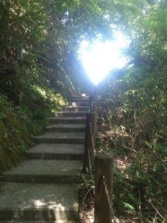 生目さん階段