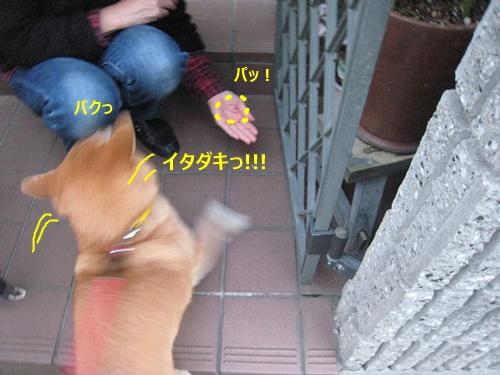 20141225001043b04.jpg