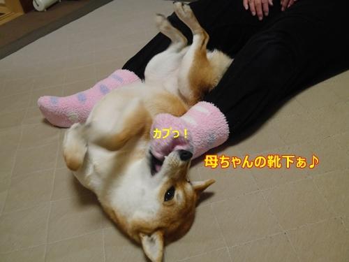 1母ちゃんの靴下