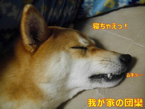 5寝ちゃった
