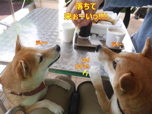 3パンっ!