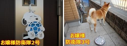 3玄関前の守護神