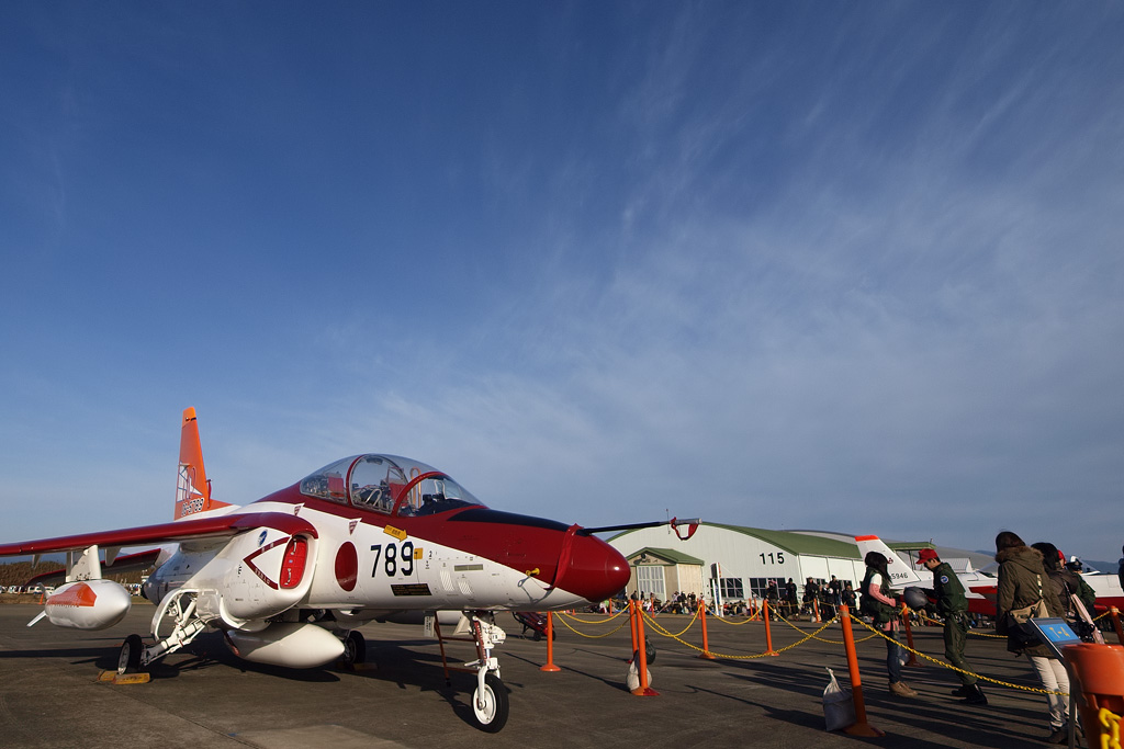 航空自衛隊60周年記念塗装機