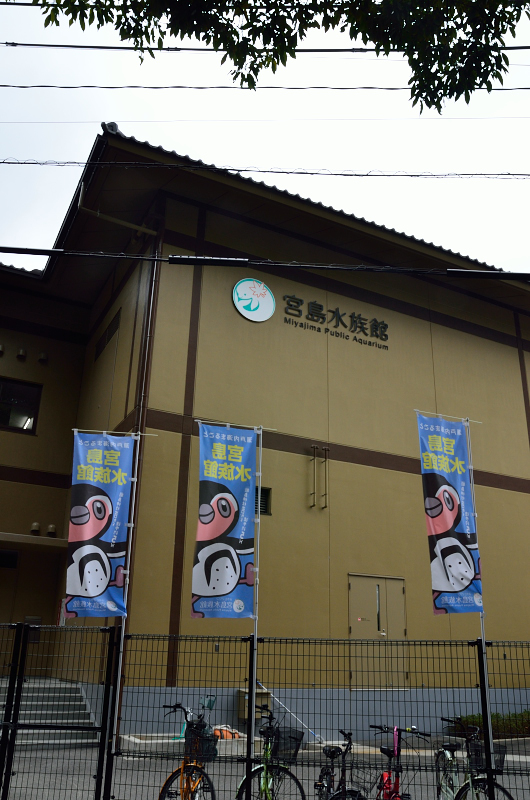 miyajima24.jpg