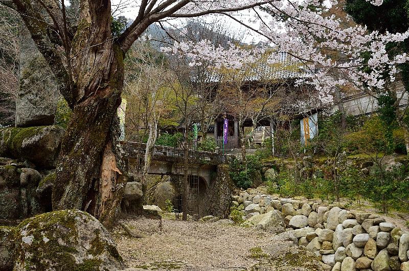 miyajima44.jpg