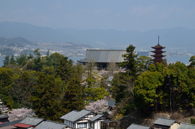 miyajima51.jpg