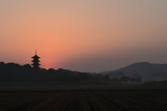 DSC_0283国分寺の太陽