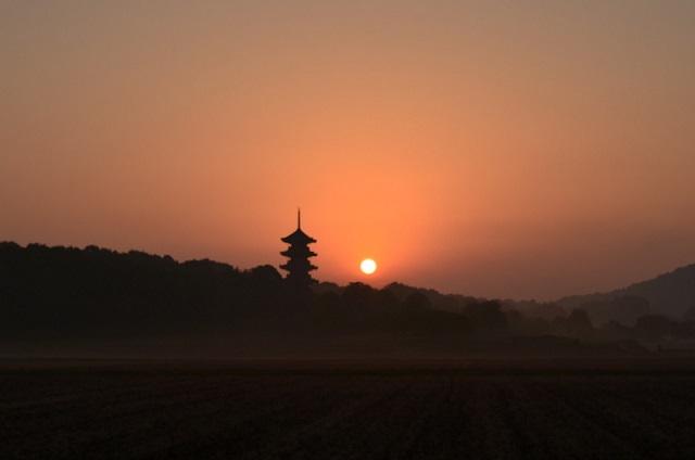 DSC_0321国分寺の太陽