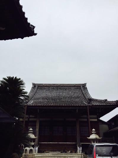 IMG_3928.jpg