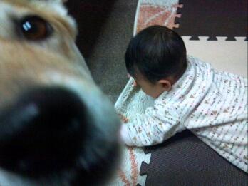 fc2_2015-01-01_14-18-14-019.jpg