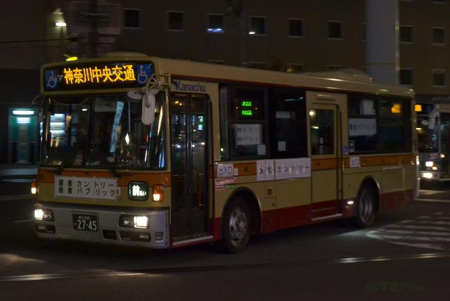 DSC_0058n.jpg