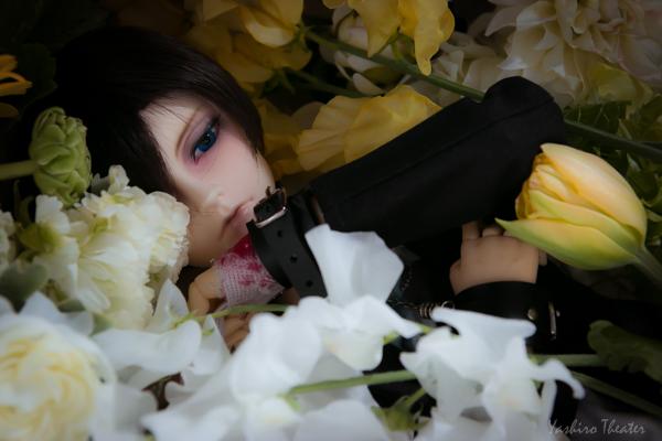 doll20150304000.jpg